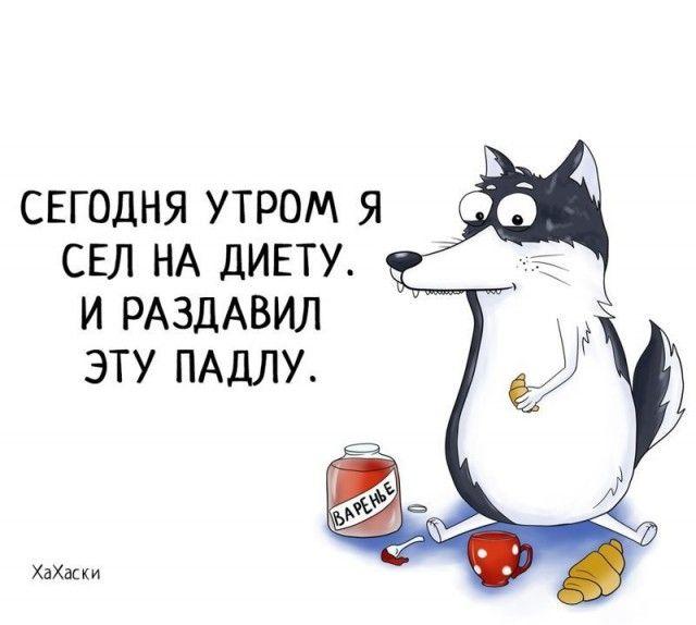 Прикольные и смешные комиксы из жизни Хаски Карла - подборка 32 картинки 19