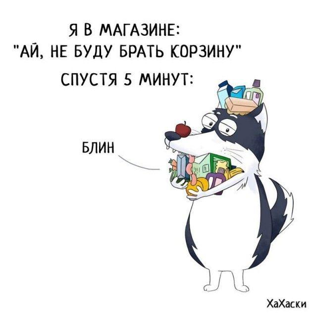Прикольные и смешные комиксы из жизни Хаски Карла - подборка 32 картинки 25