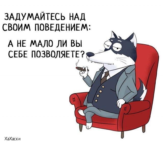 Прикольные и смешные комиксы из жизни Хаски Карла - подборка 32 картинки 31