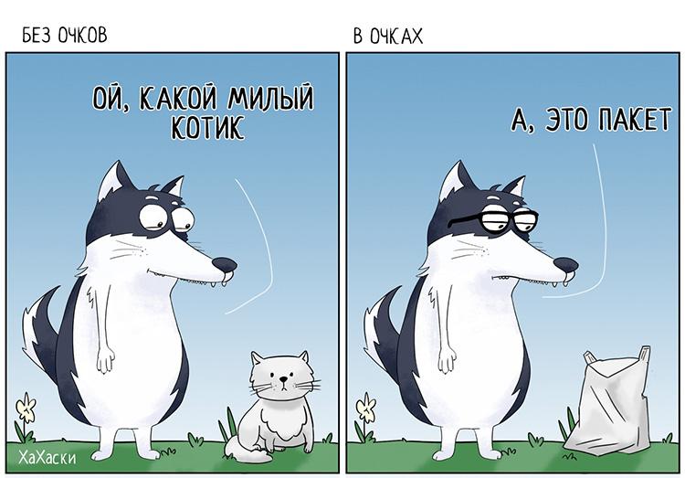 Прикольные и смешные комиксы из жизни Хаски Карла - подборка 32 картинки 4