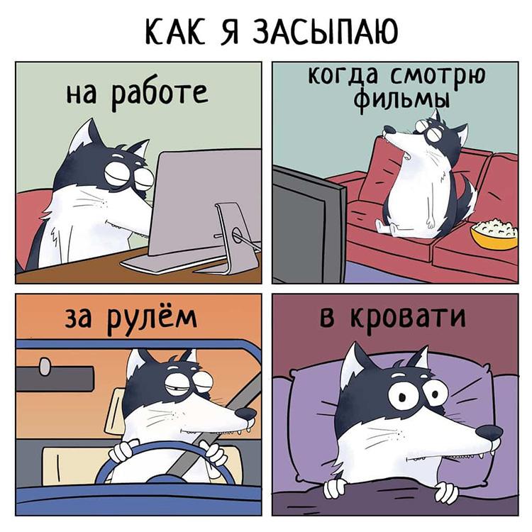 Прикольные и смешные комиксы из жизни Хаски Карла - подборка 32 картинки 5