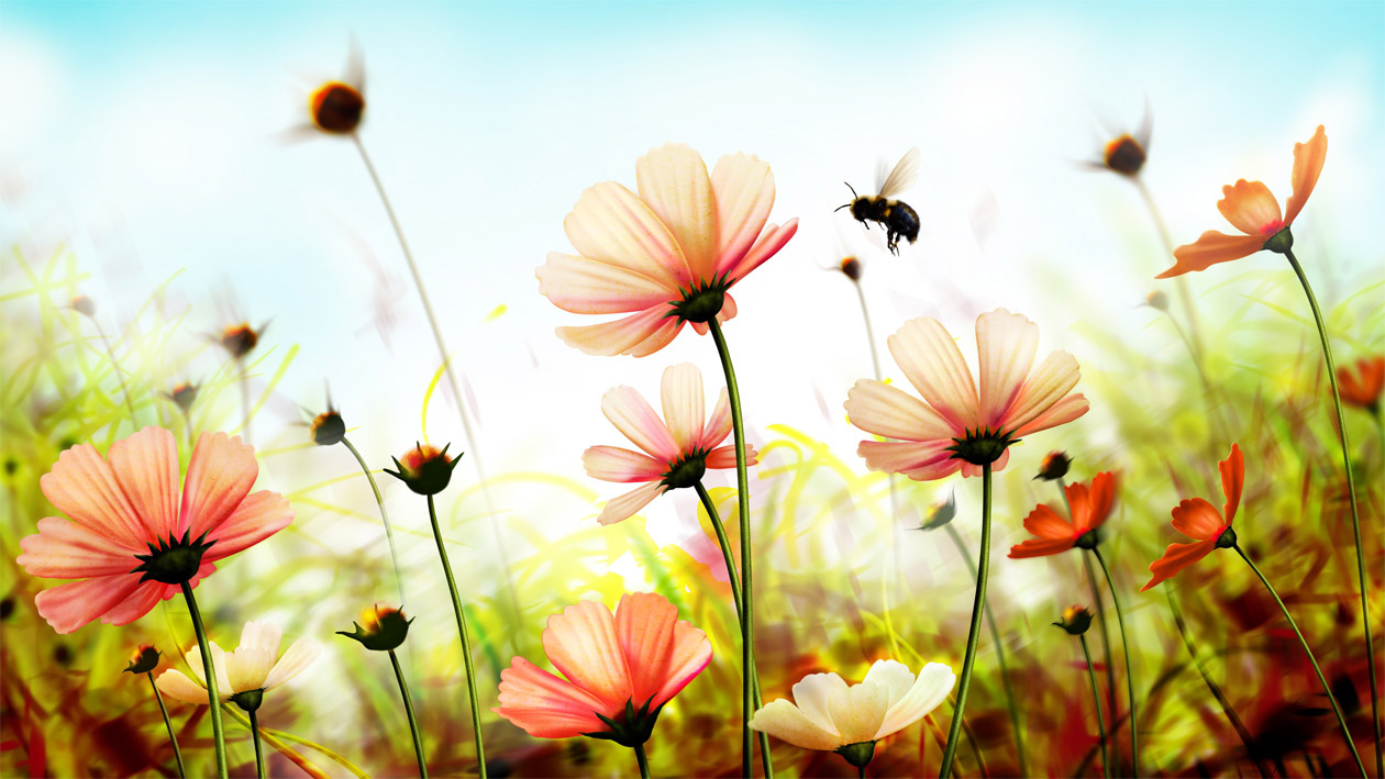 Удивительная и красивая подборка картинок Весна - 25 фото 25