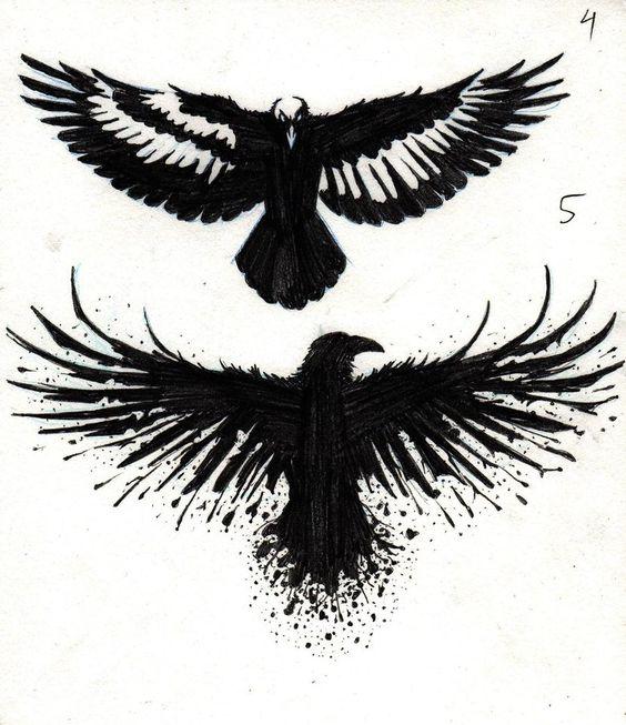 Классные и крутые картинки воронов, фото воронов - подборка 1