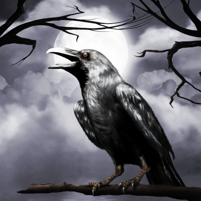 Классные и крутые картинки воронов, фото воронов - подборка 12