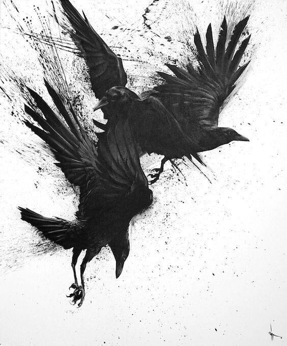 Классные и крутые картинки воронов, фото воронов - подборка 2