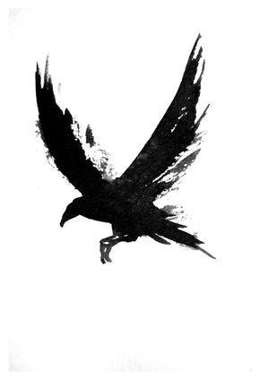 Классные и крутые картинки воронов, фото воронов - подборка 7