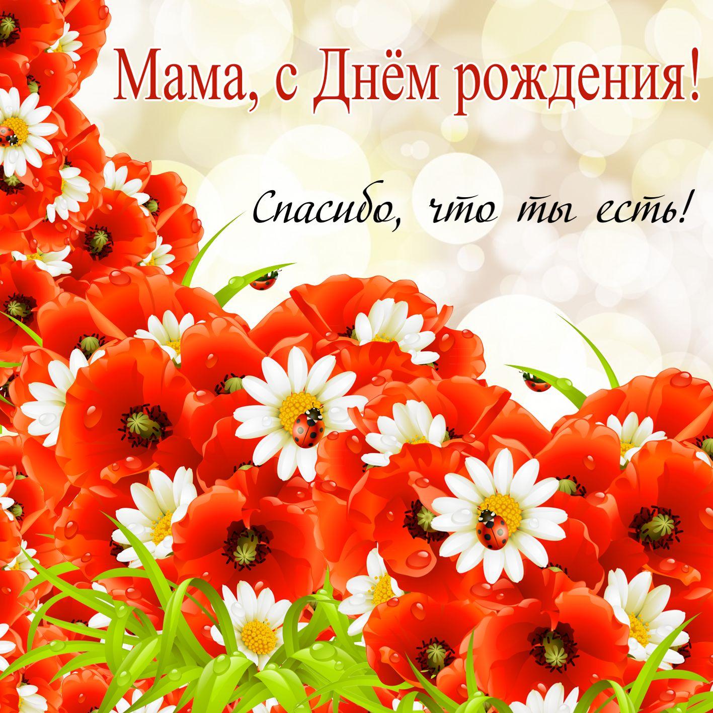 Поздравления С Днем Рождения маме - картинки и открытки 11