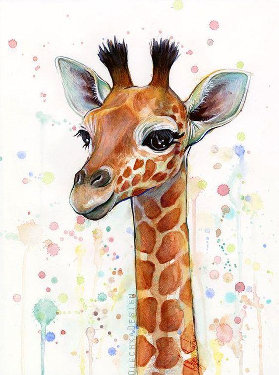 Прикольные и красивые картинки, рисунки животных для срисовки 1