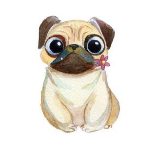 Прикольные и красивые картинки, рисунки животных для срисовки 9