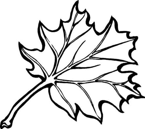 Шаблон кленовый лист, интересные рисунки шаблоны кленовый лист 3
