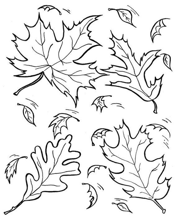 Шаблон кленовый лист, интересные рисунки шаблоны кленовый лист 7