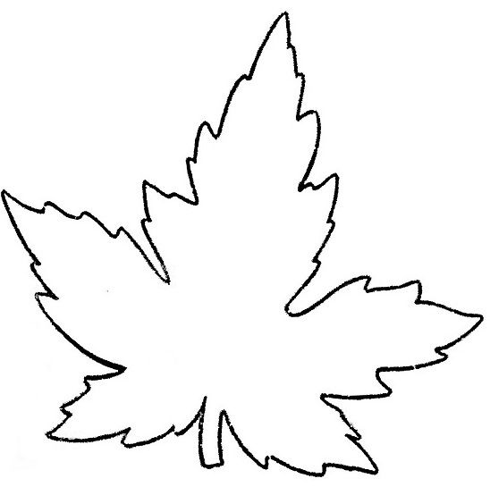 Шаблон кленовый лист, интересные рисунки шаблоны кленовый лист 8