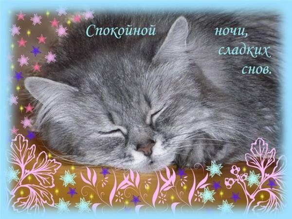 Картинки доброй ночи сладких снов 7