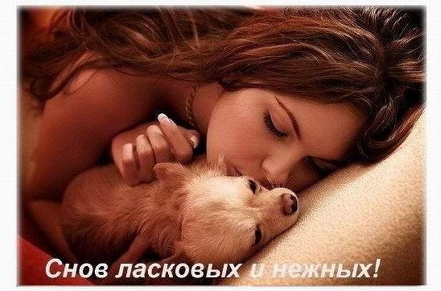 Картинки доброй ночи сладких снов