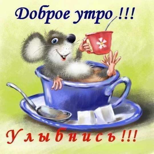 Kartinki_dobrom_utrom_smeshnyie7