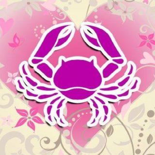 Год петуха - гороскоп на 2017 год рак женщина