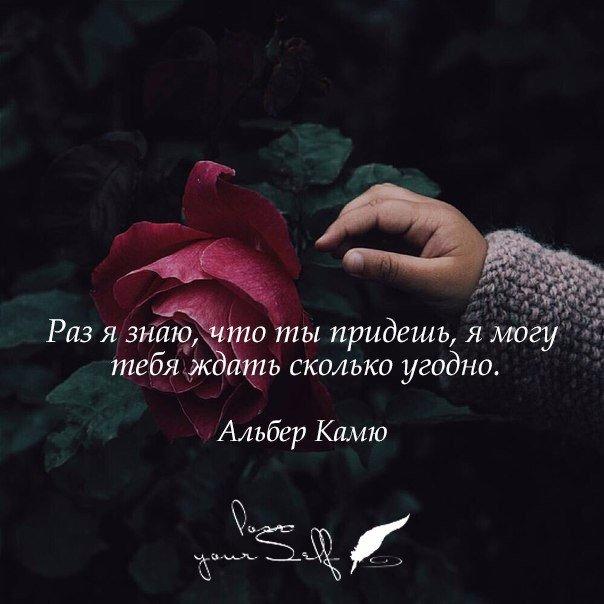 Фото с надписями про жизнь со смыслом и любовь