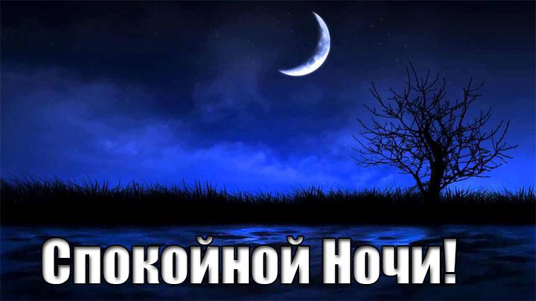 Картинки спокойной ночи, прикольные, веселые 8