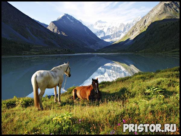 Красивые фото природы России, фото - пейзажи природы России 30