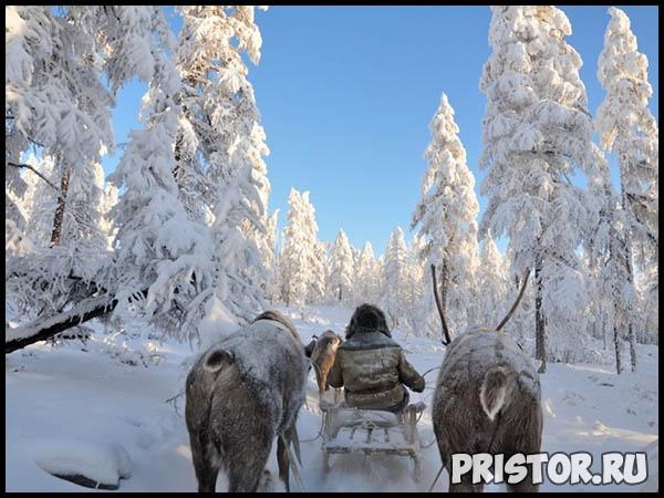 Красивые фото природы России, фото - пейзажи природы России