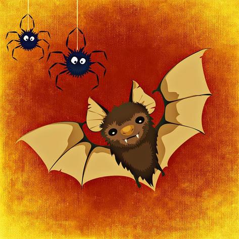 Летучая мышь картинки, прикольные и красивые картинки летучей мыши 4