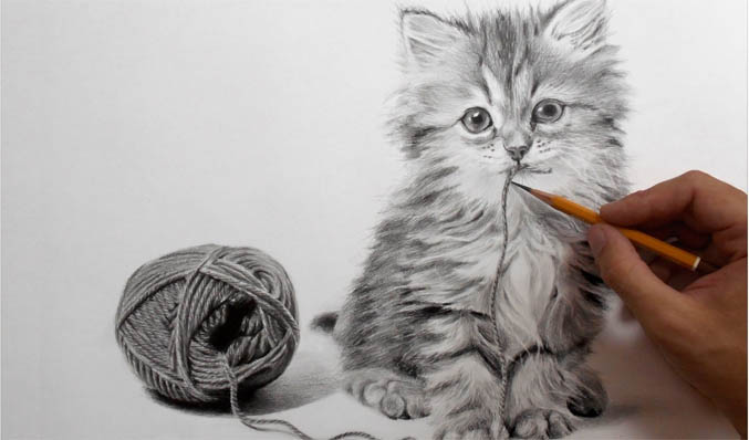 Рисунок кошки карандашом - прикольные и красивые картинки 8