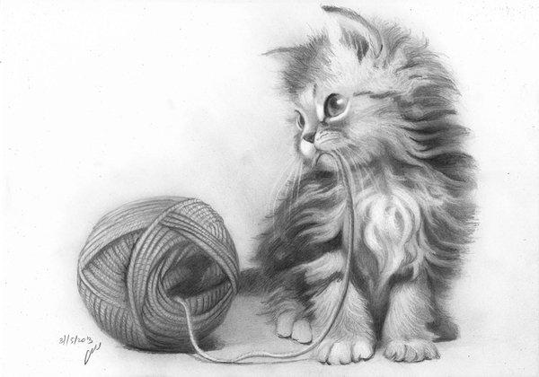 Рисунок кошки карандашом - прикольные и красивые картинки 9