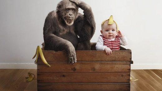 Смешные картинки для детей 11