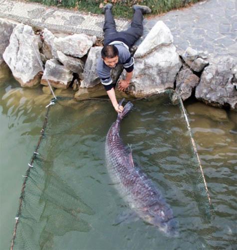 Фото приколы про рыбалку, смешные приколы на рыбалке - фото 8