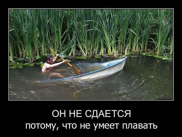 Фото приколы, смешные до слез с надписями 10