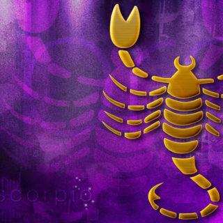 Год Петуха - гороскоп на 2017 год скорпион женщина и мужчина