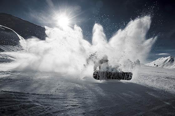 Живая природа зимой - фото красивые, удивительные, интересные 11