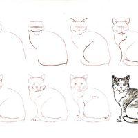 Как нарисовать котенка поэтапно карандашом - смотреть с фото 7