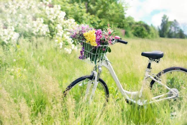 Картинки весна природа, красивые картинки весны в природе 4