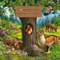 Картинки домашних животных для детского сада - красивые и прикольные 2