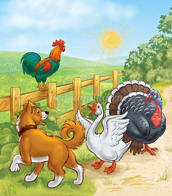 Картинки домашних животных для детского сада - красивые и прикольные 7