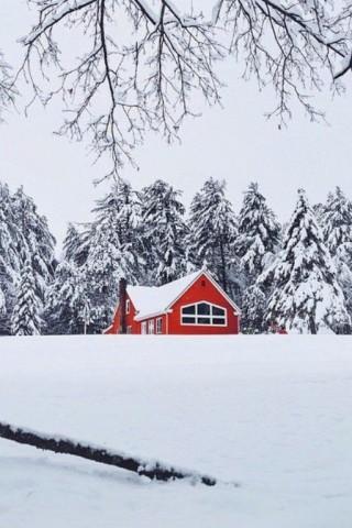 Картинки зима на телефон - красивые и прикольные скачать бесплатно 11