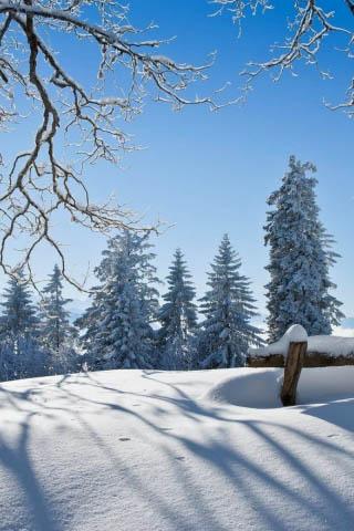 Картинки зима на телефон - красивые и прикольные скачать бесплатно 20