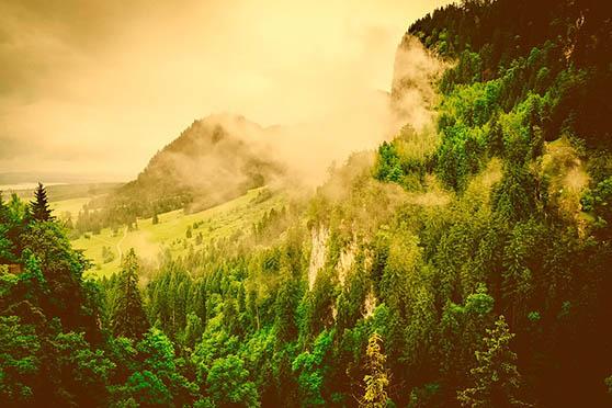 Картинки природы скачать бесплатно, красивые, прикольные 10