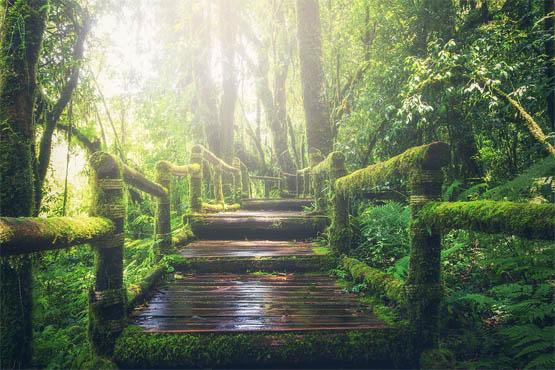Красивейшие места планеты фото - удивительные, интересные 9