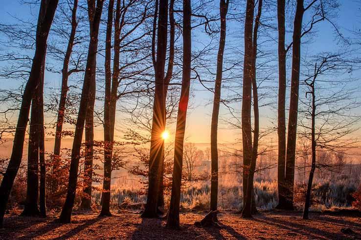 Красивые картинки природа, картинки природы фото и картинки 11