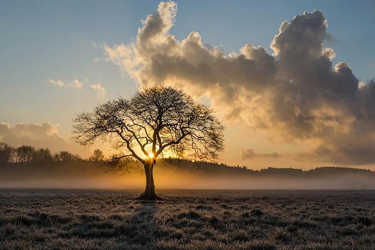 Красивые картинки природа, картинки природы фото и картинки 7