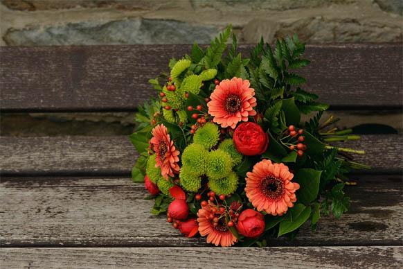Красивые цветы фото и картинки - удивительные, прикольные 1