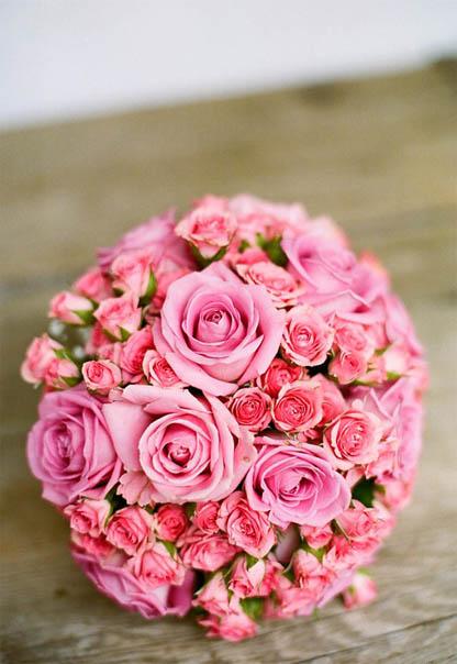 Красивые цветы фото и картинки - удивительные, прикольные 2