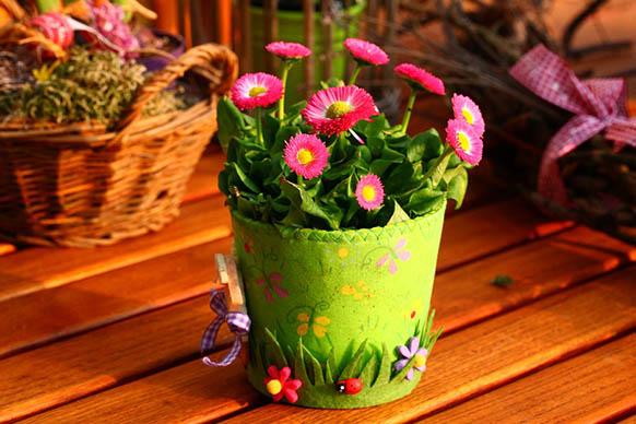 Красивые цветы фото и картинки - удивительные, прикольные 6