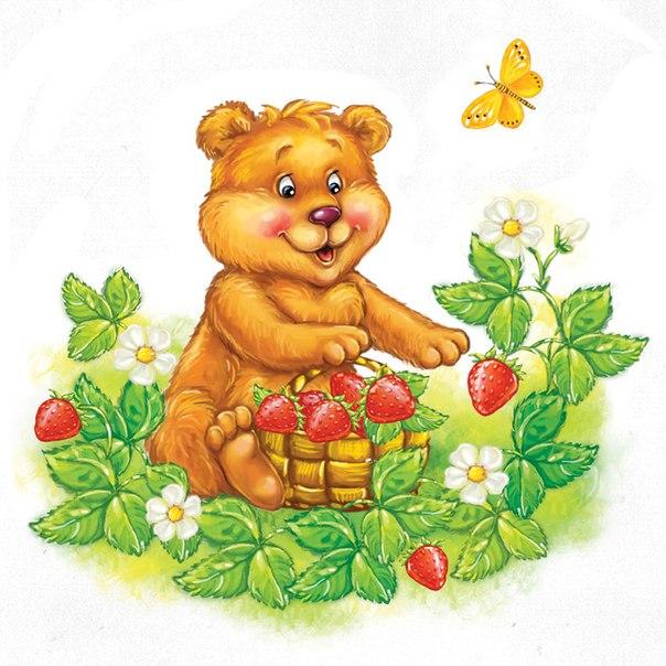 Медведь картинки для детей, медвежонок картинки для детей 11