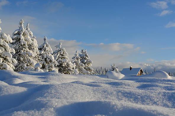 Очень красивые картинки зима природа, фото природы зимы - смотреть 5