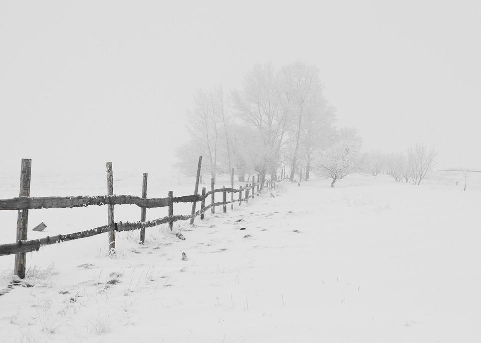 Природа зимы - картинки красивые, зимняя природа картинки 13