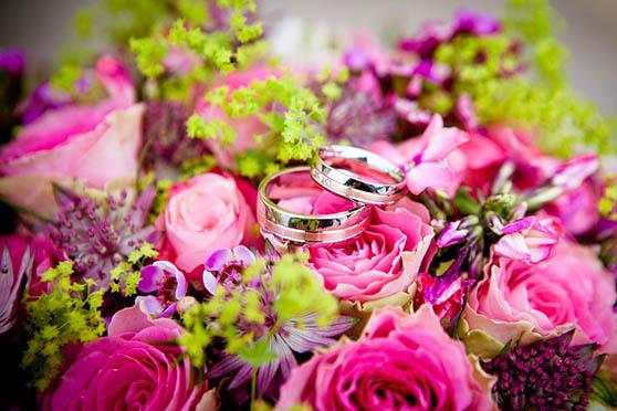 Цветы фото красивые - скачать бесплатно, удивительные, классные 10