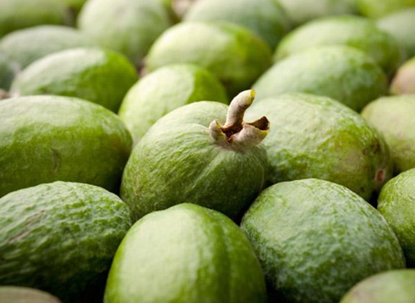 Фейхуахуа фрукт - красивые фото и картинки, смотреть 3